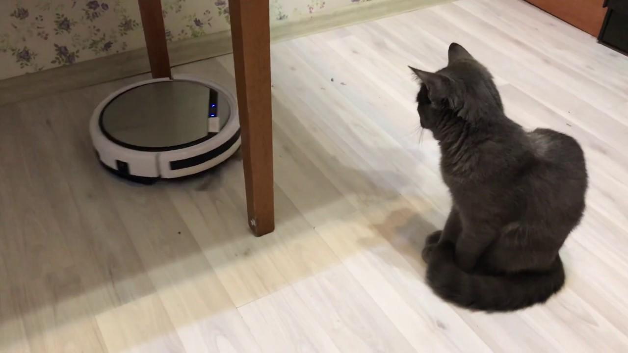 Обзор робота пылесоса iLife v50 c Алиэкспресс
