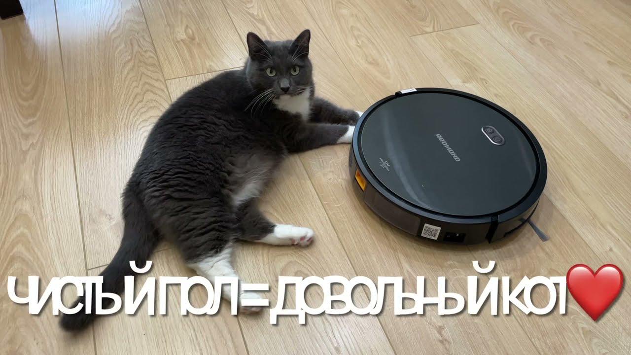 Купила робот-пылесос REDMOND RV-R650S | реакция кота
